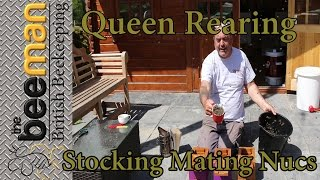 Queen Rearing Stocking Filling Apidea / Mating Nucs With Bees