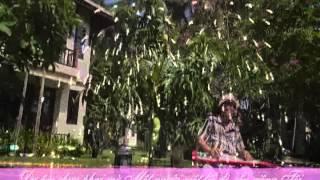 BIẾT NÓI GÌ ĐÂY Huỳnh Anh Guitar Hawaii CAODZAN 08DVD55