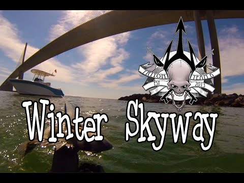 Spearfishing Florida - Winter Dive At Skyway Bridge