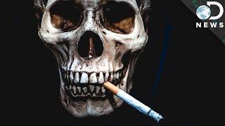 Por que exactamente fumar mata