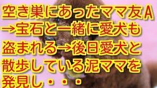 【スカッとする話 キチママ】空き巣にあったママ友A→宝石と一緒に愛犬の...