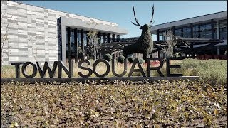 DailyVlog | Town Square Metepec
