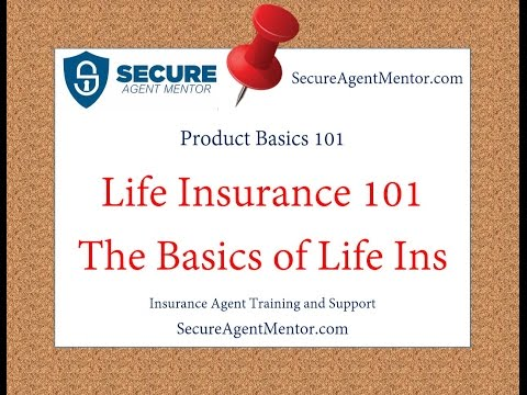 Life Insurance 101: The Basics of Life Insurance for Life Insurance Agents