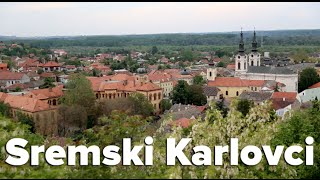The Wine Town of Sremski Karlovci, Serbia