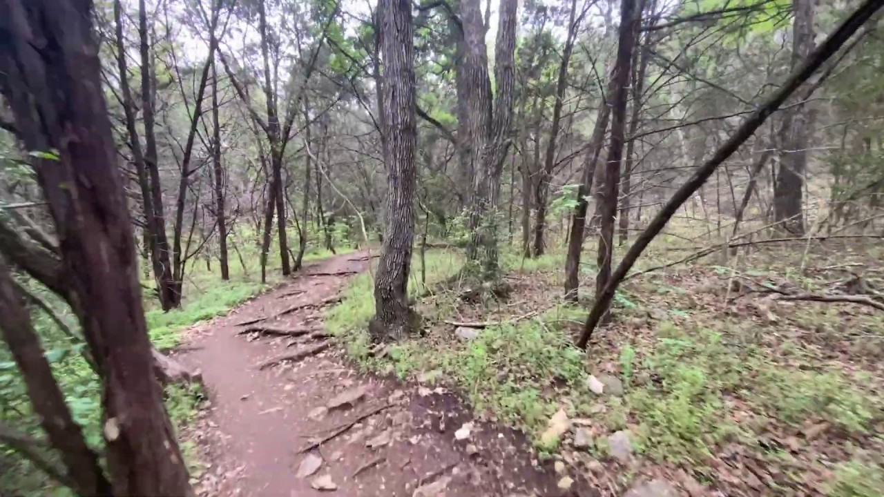 Hill Country Conservancy: Virtual Walk-and-Talk Gaines Creek. 4/10/2020