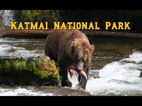 Our Trip To Katmai National Park