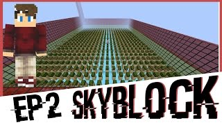 Minecraft Skyblock Ep.2 -