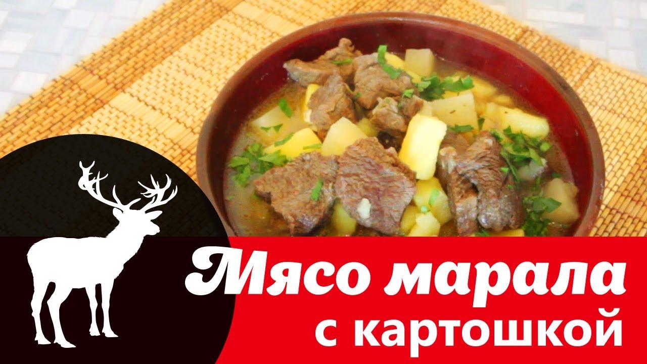 Видео рецепт Мясо марала тушёное с картошкой: как вкусно приготовить блюдо из марала