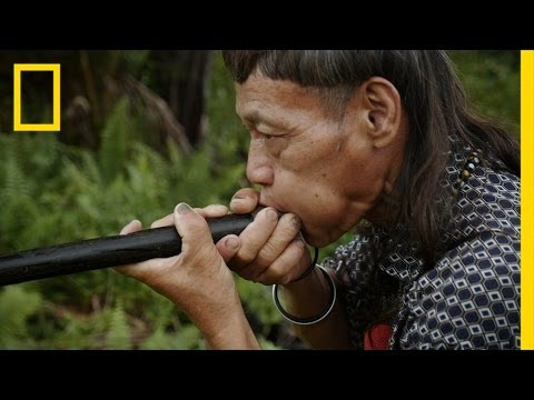 Thumbnail: Blowpipe Maker Shares Rare, Ancient Craft | Short Film Showcase