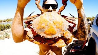 REMOTE CAMPING WITH NO FOOD Giant Mud Crab Catch & Cook - Ep 150
