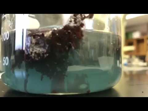 Aluminum foil reacting with Copper (II) Chloride