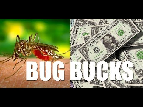 Mosquito Control Franchises - Industry Overview
