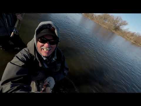 Steelhead Fishing  -  Where To Fish On The Grand River