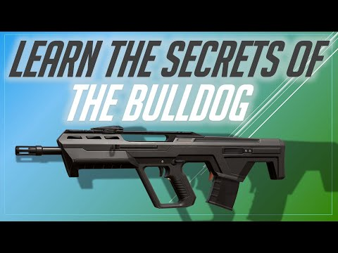 VALORANT: How to NOT Suck at the Bulldog