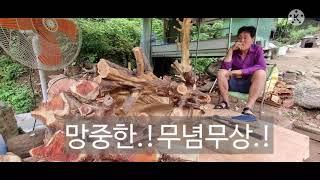 가평 화악산 깊은 산 속 한손 목공예작가 김춘경옹.!
