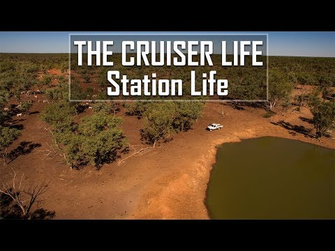 Living & Working On A Cattle Station In North West QLD