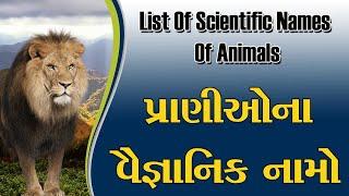 પ્રાણીઓના વૈજ્ઞાનિક નામ | list of scientific names of animals | scientific name list in Gujarati