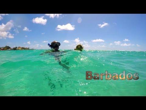 7 Days In Barbados