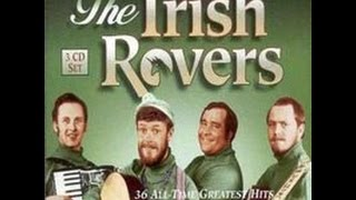 The Irish Rovers Wasn't That A Party Lyrics On Screen