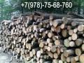 Купить дрова в Симферополе цена, ДУБ, Груша