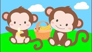 Maymunu Seviyorsan Alkışla | Vahşi Hayvanları Öğreten Çocuk Şarkısı