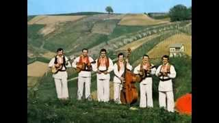 Zagrebacki muzikasi - Fala