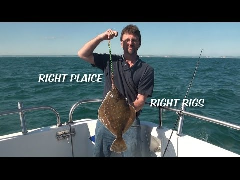 Portland Plaice Fishing Rigs And 2013 Catch Footage