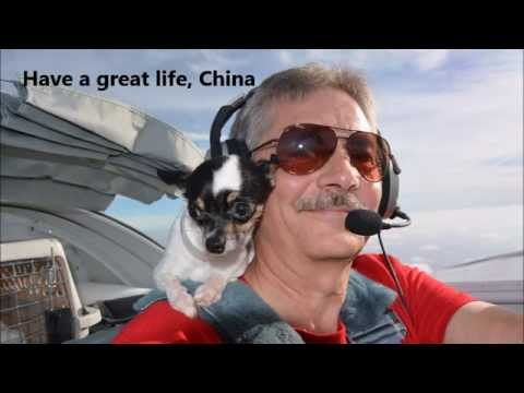 saving china