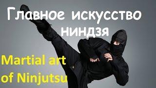 Мгновенная реакция и непоколебимая уверенность  – главное искусство ниндзя