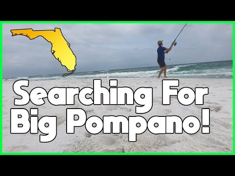 Surf Fishing - Fishing for Big Pompano | The Pompano Run on the Florida Coast