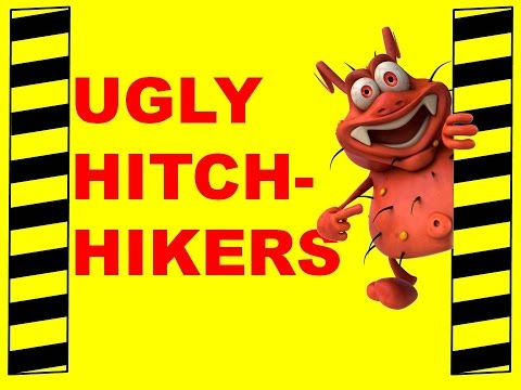 Ugly Hitchhikers - Safety & Health Training Video - Protect Your Health, Safety & Self-Respect