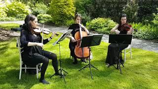 String trio playing Bach at a garden wedding @ Ashford Castle, Ireland