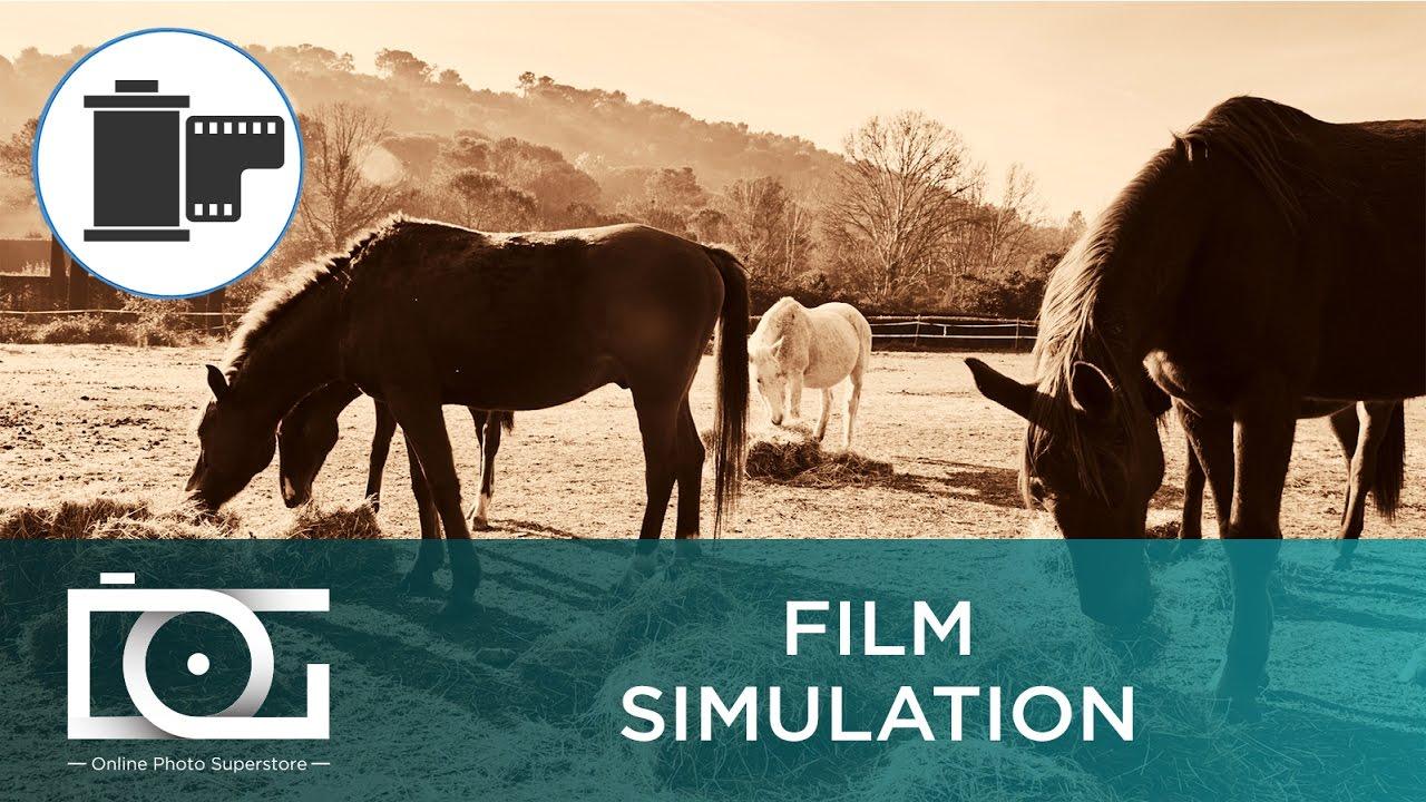 Fujifilm X-T2: How To Set Film Simulation Modes | Video Tutorial
