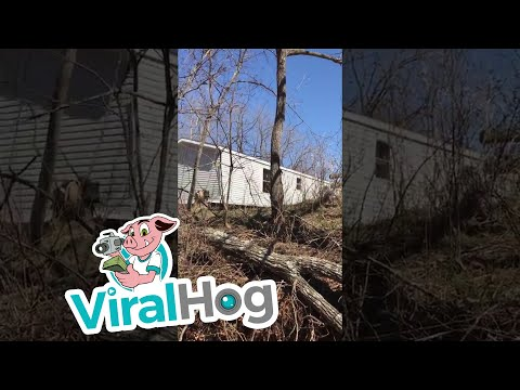 Mobile Home Moving Over Creek || ViralHog