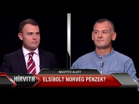 Norvég civil pénzek: élő adásban kért bocsánatot az államtitkár