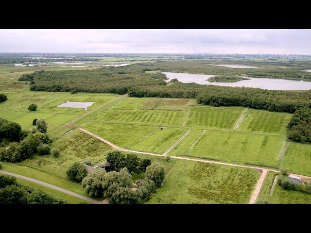 Schil Naardermeer: de omgeving