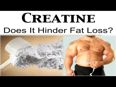 Does Creatine affect Fat Loss? (can you take creatine while cutting)