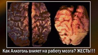 Как Алкоголь влияет на работу мозга? Жесть!!!