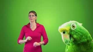Gebarenliedje: papegaaitje leef je nog?