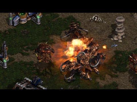Download Larva (Z) v Light (T) on Fighting Spirit- StarCraft  - Brood War REMASTERED