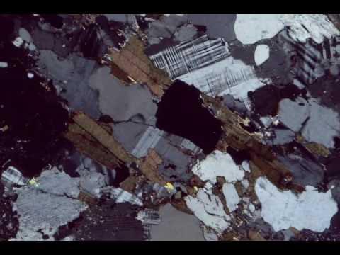 Biotite, Crossed Polars