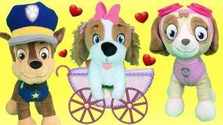 Aprende con juguetes Paw patrol: Chase y Skye y el regalo sorpresa de un cachorro de patrulla canina
