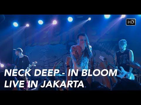 Neck Deep - In Bloom (Live in Jakarta) HD