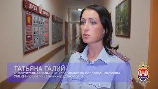 видео временная регистрация в Калининграде