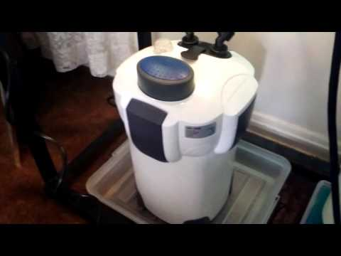 How to fix a burned out pump on the Sunsun Hw 304B Canister filter