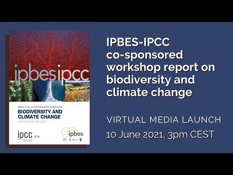 Restitution du rapport Biodiversité et Changement climatique