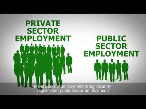 Unemployment Policy as an agenda for elections 2017
