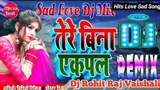 Teri Bin Ek Pal Ji Naiyo Lagda Hindi Sad DJ Song(Udit Narayan)🎈Dj Rohit Raj Vaishali🎈