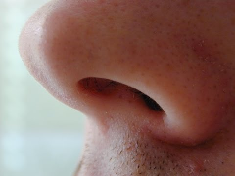 Top 10 Reasons To Stop Mouth Breathing and Breathe ONLY Through Your Nose