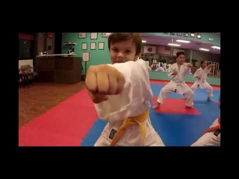 Fox Chapel Elementary School - Free Karate Lesson 240-372-2380